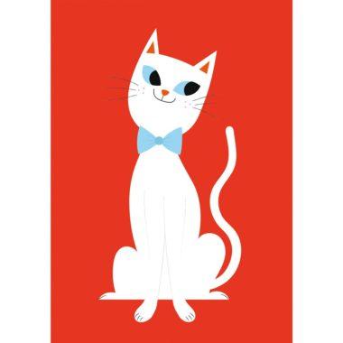 white-cat-large-27620