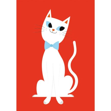 white-cat-large-27620